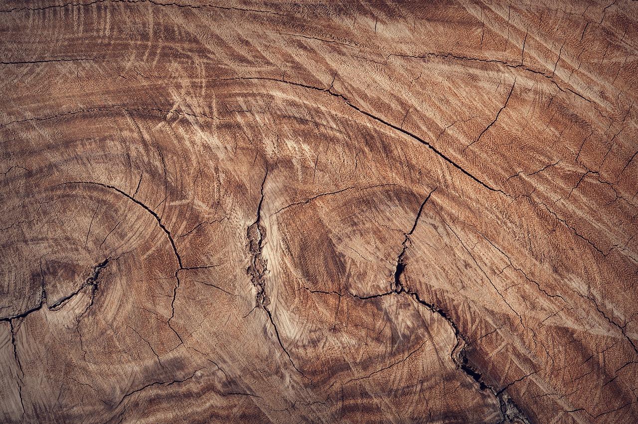 formes de bois