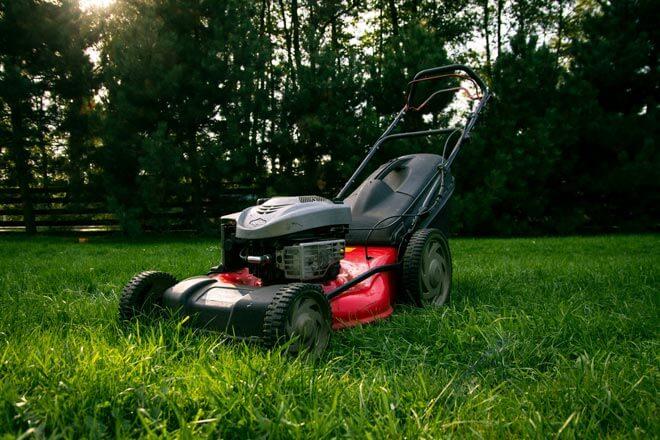 quelle tondeuse choisir pour avoir une pelouse parfaite