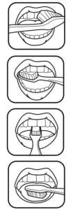 comment bien se laver les dents