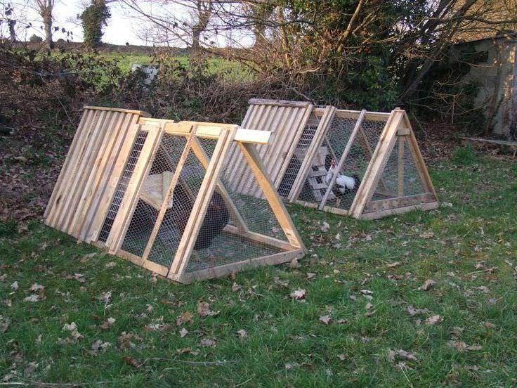 comment construire un poulailler
