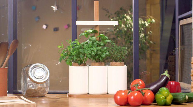 deux m thodes pour faire s panouir un mini potager chez soi. Black Bedroom Furniture Sets. Home Design Ideas