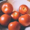 recupérer les graines de tomates